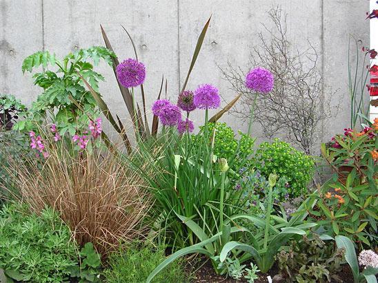 Декоративные луки в дизайне сада